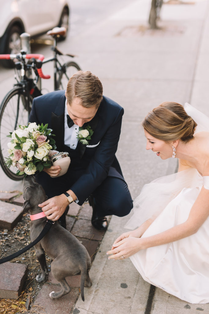 Bride and groom stopping to pet puppy