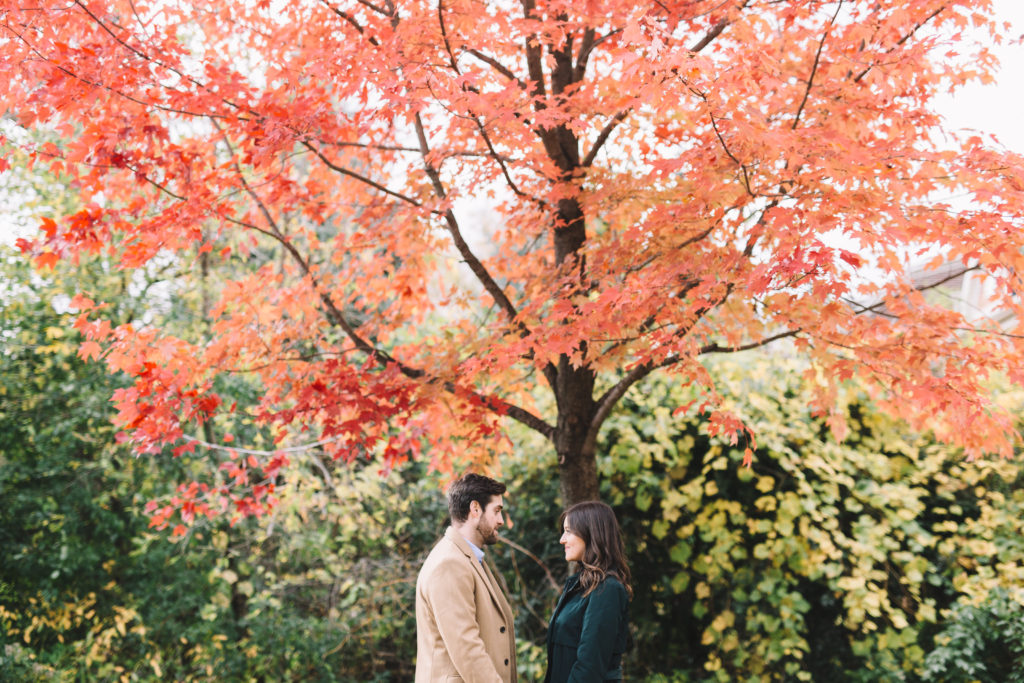 Couple hanging out under red leaf tree