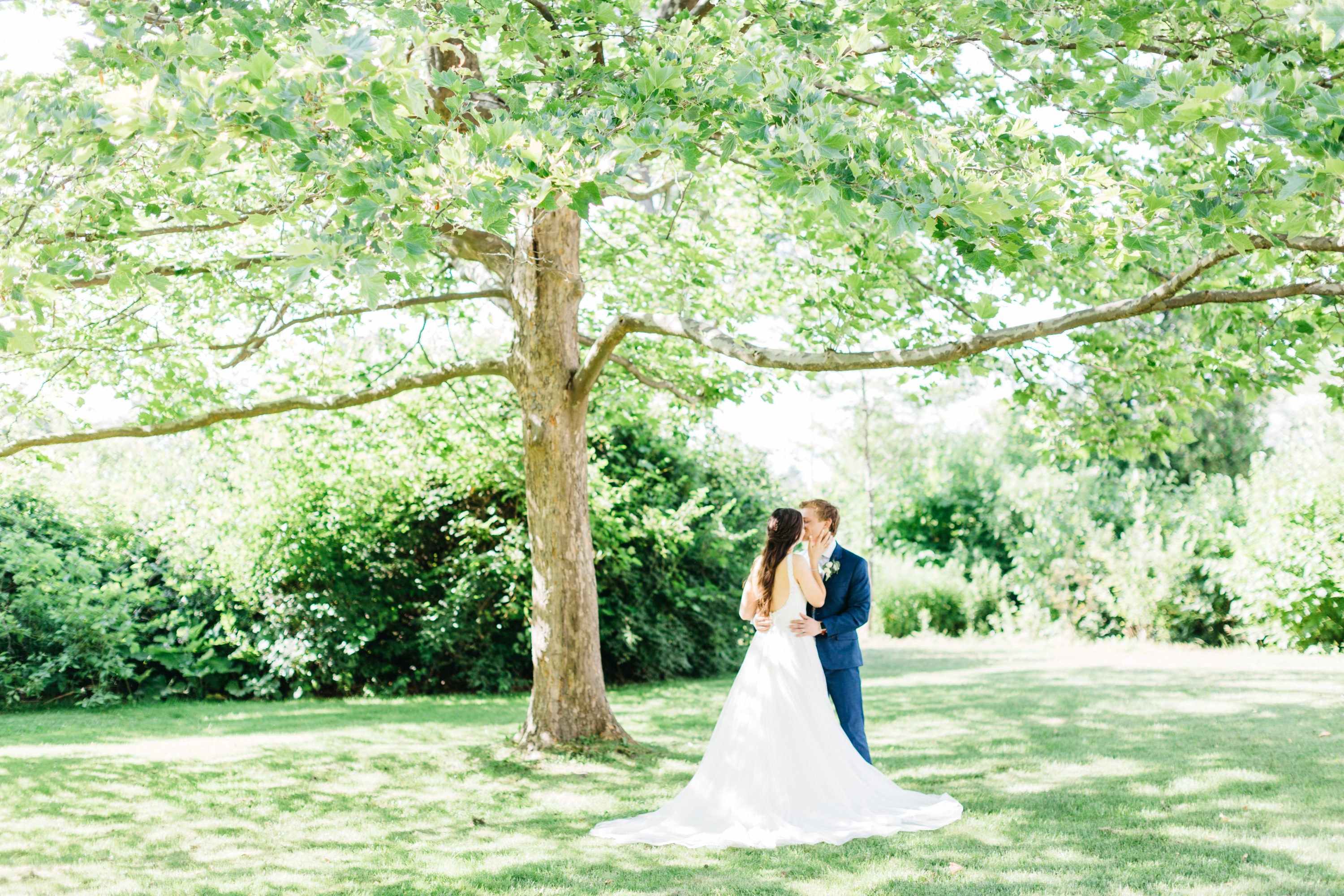 Bride and groom kissing under a tree at Harding Waterfront Estate Wedding