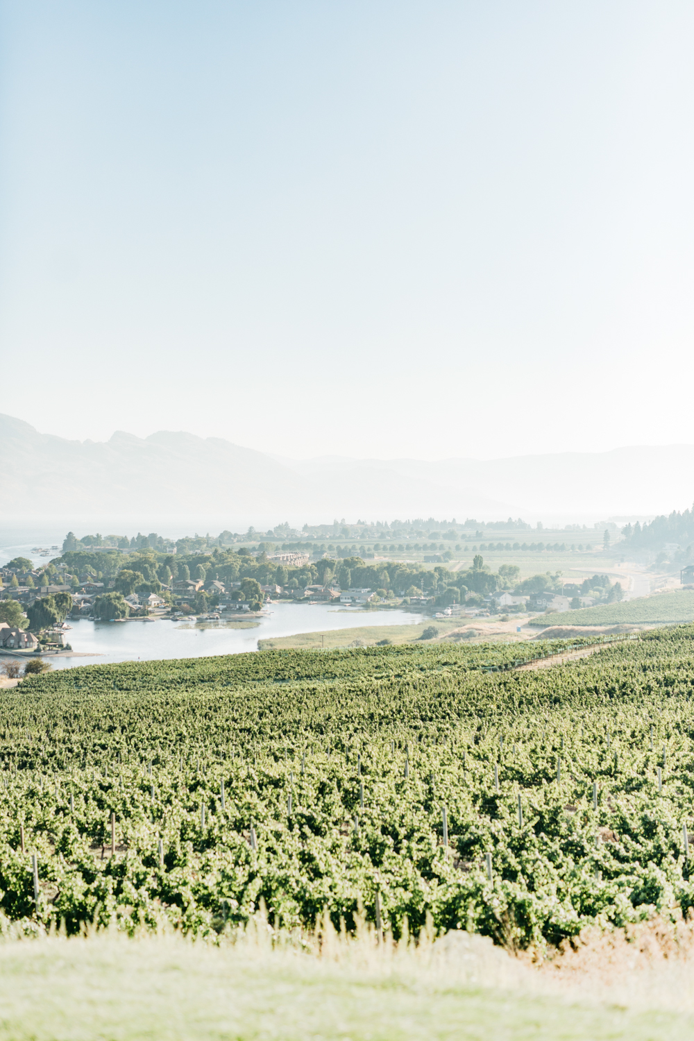 Scenic view of water and mountains in Kelowna at Quails Gate Estate and Winery